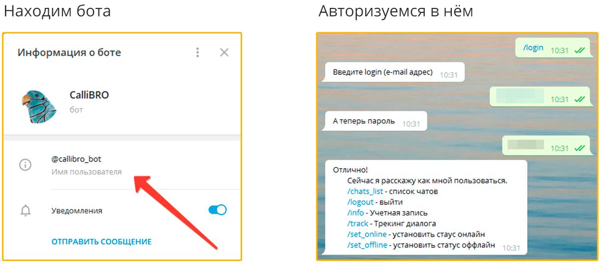 Найдите бота CalliBRO в Telegram и авторизуйтесь