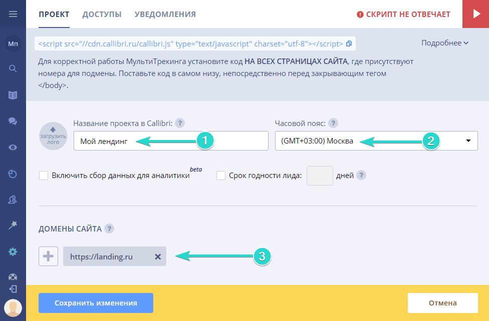Настройте свой проект в Callibri. Заполните имя, часовой пояс и привяжите домены